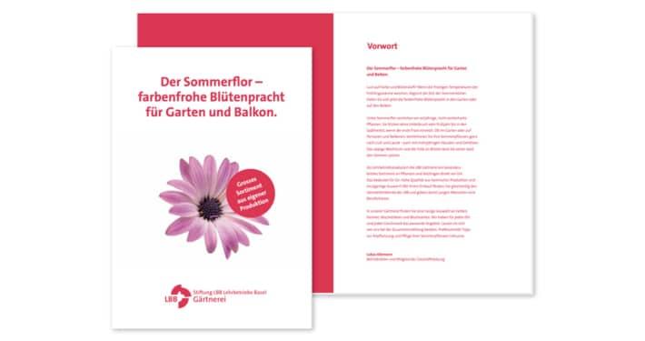 LBB Gärtnerei Sommerflor 2