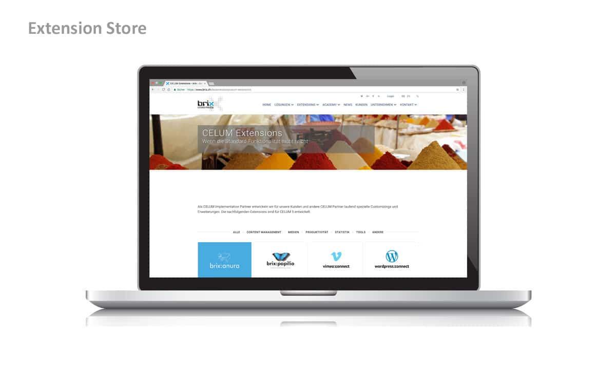 Webseite & Text für brix cross media 1